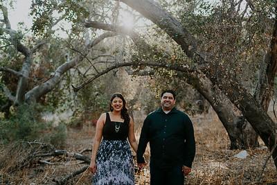 Swapna and Atul Engagement-22