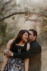 Swapna and Atul Engagement-28