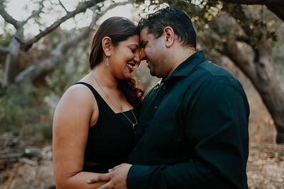 Swapna and Atul Engagement-10