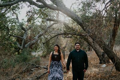 Swapna and Atul Engagement-19