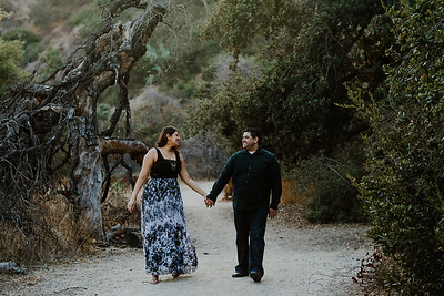 Swapna and Atul Engagement-43