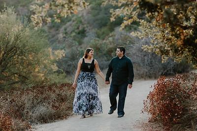 Swapna and Atul Engagement-01