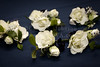 Smithfield Wedding Photography - Smithfield Center, Smithfield, Virginia