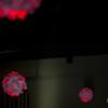 Taniesha-Elex-Engagement2015-07