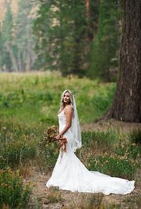 Alexandria Vail Photography Taylor   Chris Sequoias Elopment 015