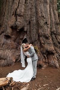Alexandria Vail Photography Taylor   Chris Sequoias Elopment 011