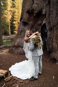 Alexandria Vail Photography Taylor   Chris Sequoias Elopment 008