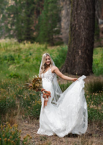 Alexandria Vail Photography Taylor   Chris Sequoias Elopment 025