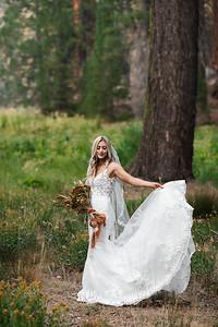 Alexandria Vail Photography Taylor   Chris Sequoias Elopment 024