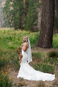 Alexandria Vail Photography Taylor   Chris Sequoias Elopment 022