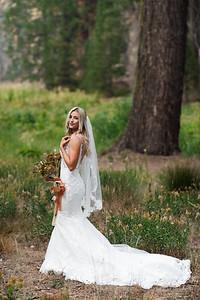 Alexandria Vail Photography Taylor   Chris Sequoias Elopment 023