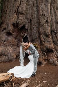 Alexandria Vail Photography Taylor   Chris Sequoias Elopment 012