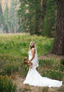 Alexandria Vail Photography Taylor   Chris Sequoias Elopment 014