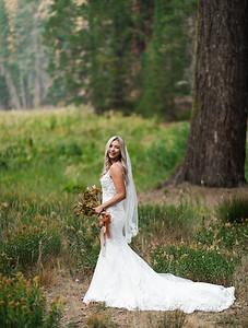 Alexandria Vail Photography Taylor   Chris Sequoias Elopment 016