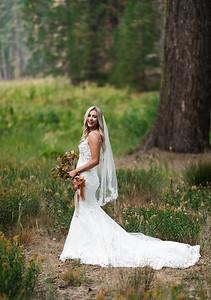 Alexandria Vail Photography Taylor   Chris Sequoias Elopment 017