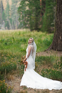 Alexandria Vail Photography Taylor   Chris Sequoias Elopment 013