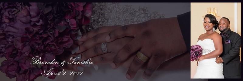 Tenishia | Brandon Wedding Album