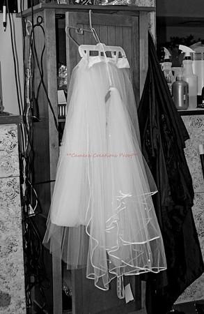 The Big Day--Mr. & Mrs. Aaron Bridgeman's Wedding