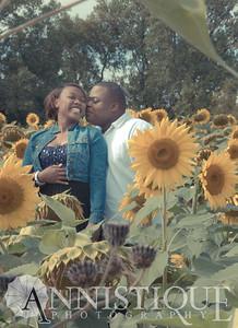 Sunflower-13