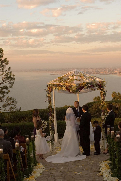 wedding (270)