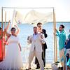 sj-wedding-0478