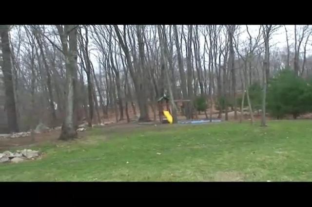 The back yard video