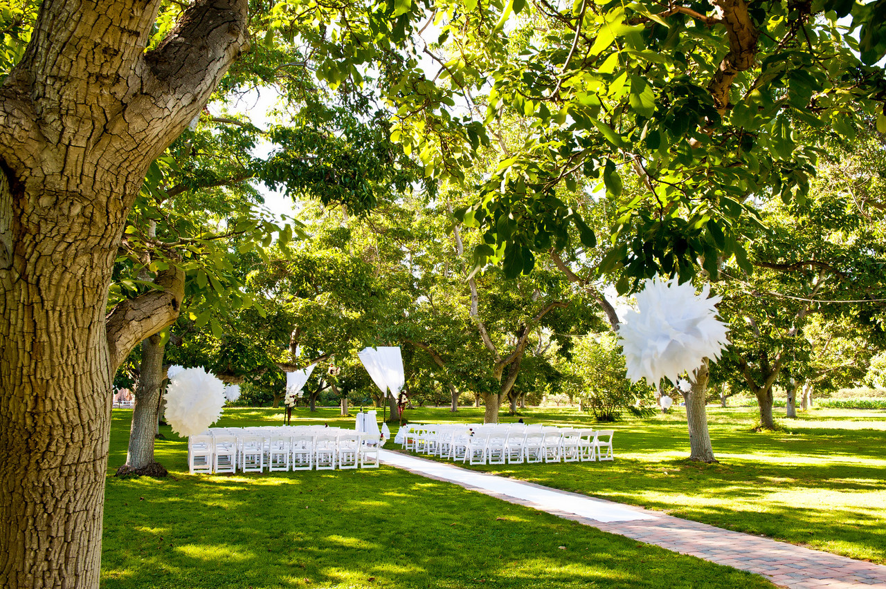 "<p><a href=""http://www.wedding.jabezphotography.com/Weddings/222-wedding-Walnut-Grove/13743060_PBgSj"">walnut grove weddings</a></p>"