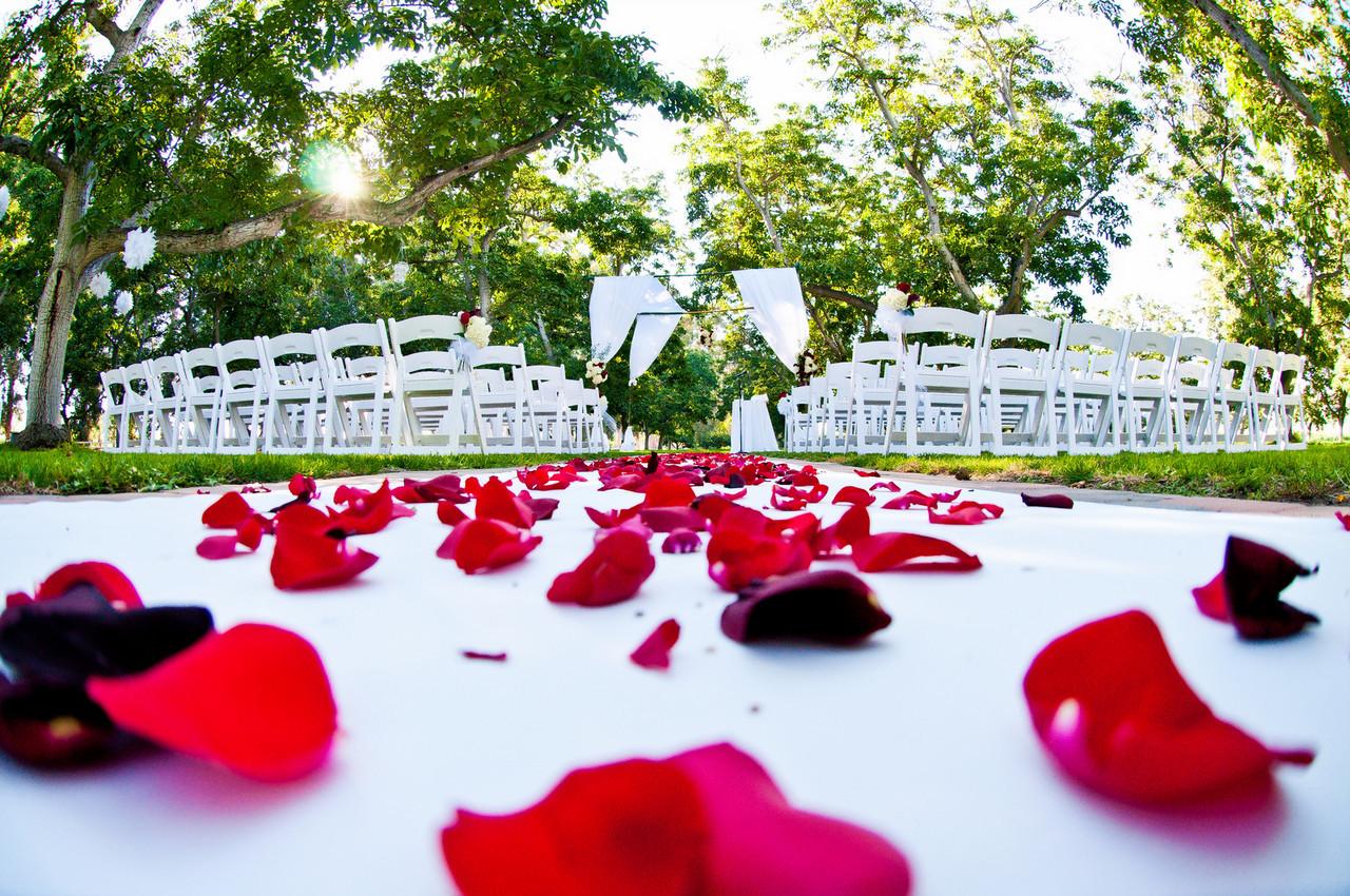 Wedding photography (Walnut Grove)