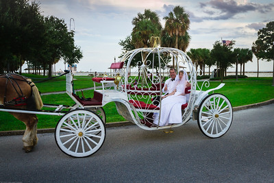 supple_wedding_carriage_ride_1037
