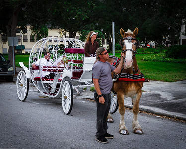 supple_wedding_carriage_ride_1021