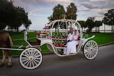supple_wedding_carriage_ride_1031