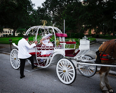 supple_wedding_carriage_ride_1019