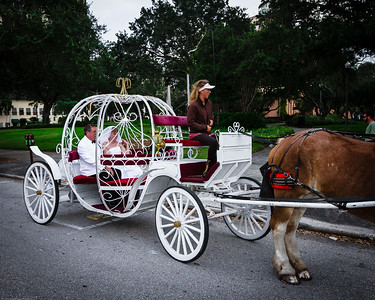 supple_wedding_carriage_ride_1020
