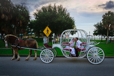 supple_wedding_carriage_ride_1049