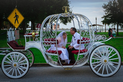 supple_wedding_carriage_ride_1048