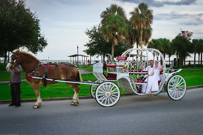 supple_wedding_carriage_ride_1042