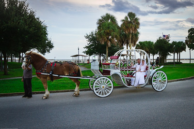 supple_wedding_carriage_ride_1041