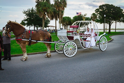 supple_wedding_carriage_ride_1040