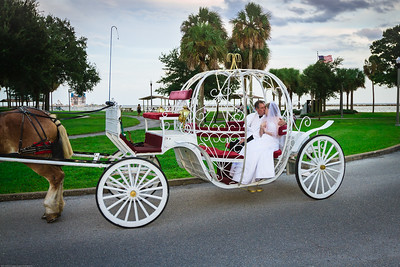 supple_wedding_carriage_ride_1038