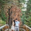 Tina-and-Kent-Sequoia-Edited-DSC_2165f