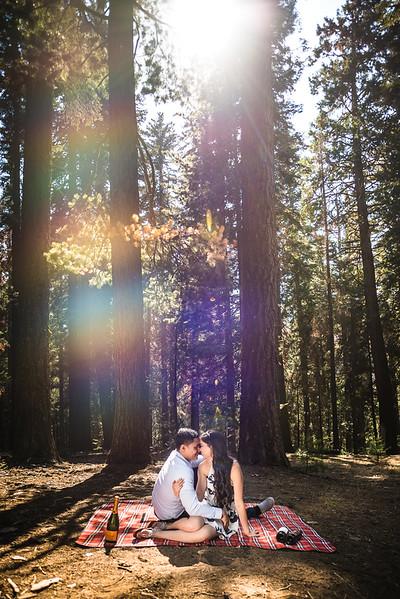 Tina-and-Kent-Sequoia-Edited-DSC_2055f
