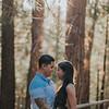 Tina-and-Kent-Sequoia-Edited-DSC_2397f