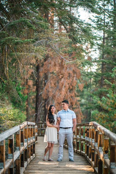 Tina-and-Kent-Sequoia-Edited-DSC_2155f