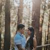 Tina-and-Kent-Sequoia-Edited-DSC_2388f