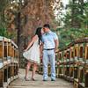 Tina-and-Kent-Sequoia-Edited-DSC_2188f-2