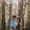 Tina-and-Kent-Sequoia-Edited-DSC_2403f