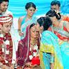 Wedding (501)