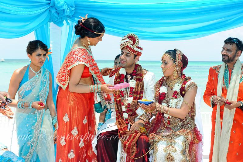 Wedding (449)