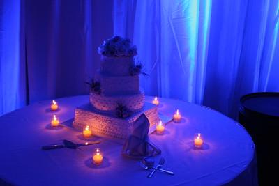 Tolep Kushner Wedding