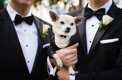 Troy and Michael Wedding - Portraits